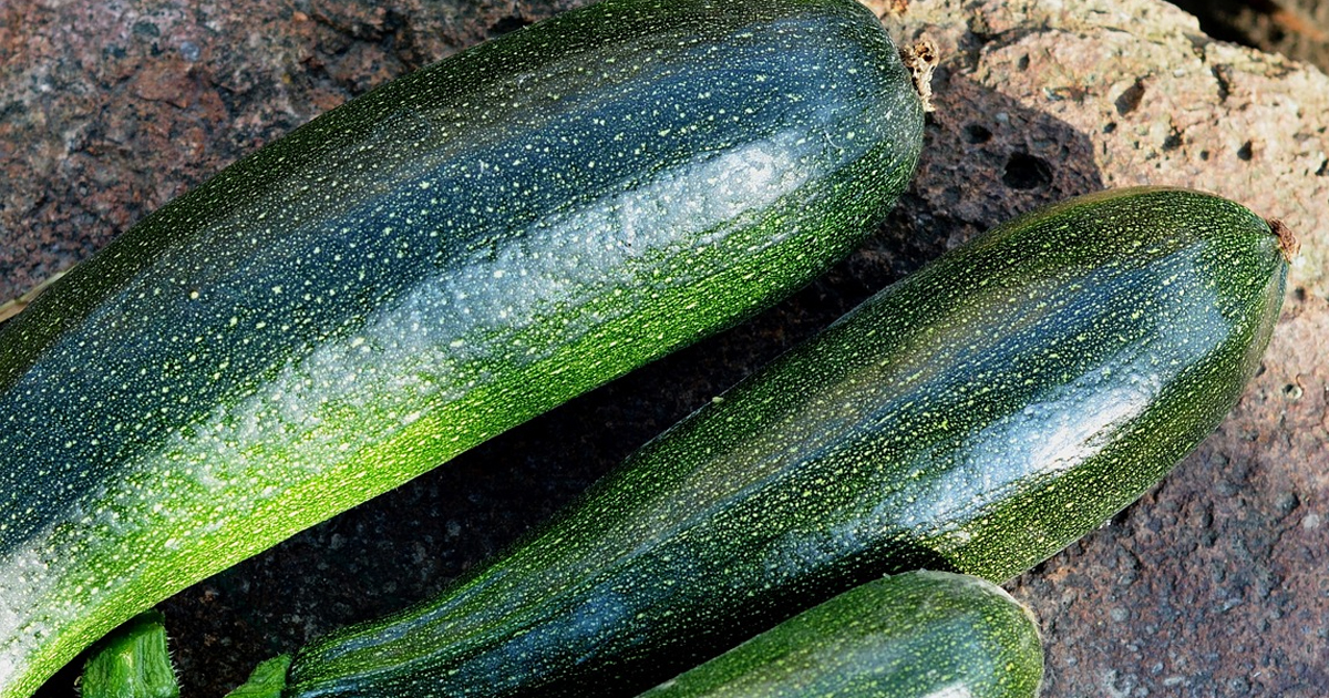 how-to-eat-the-seasons-butternut-courgette-marrow