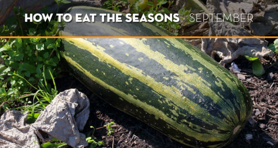 how-to-eat-the-seasons-september