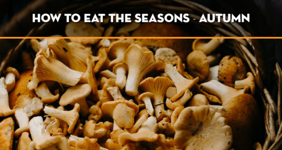 how-to-eat-the-seasons-autumn