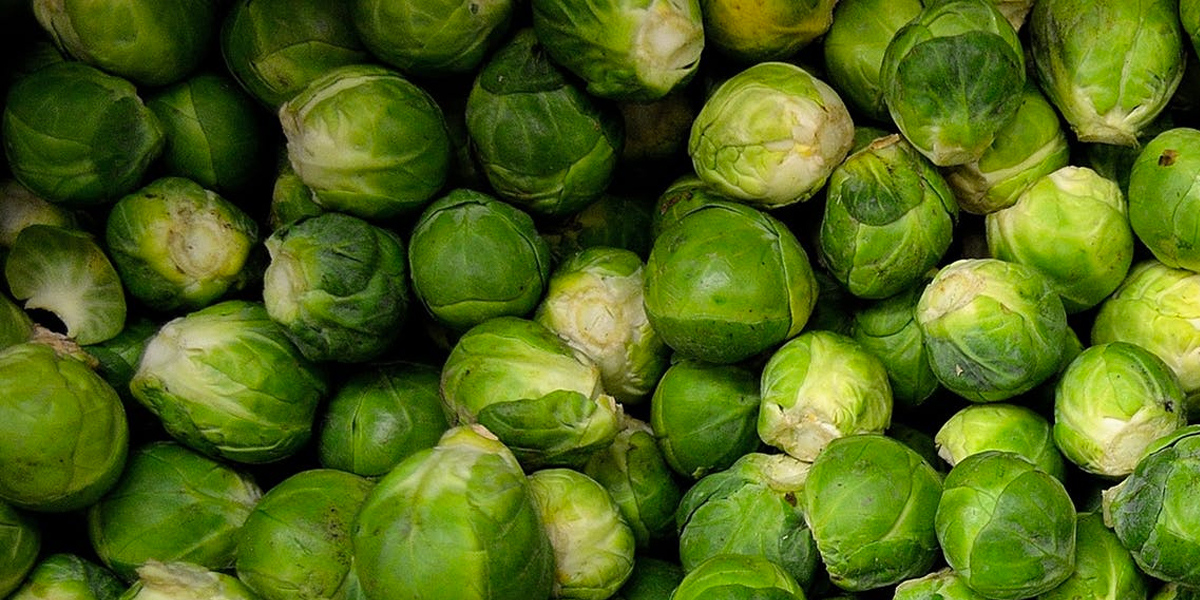 how-to-eat-the-seasons-sprouts
