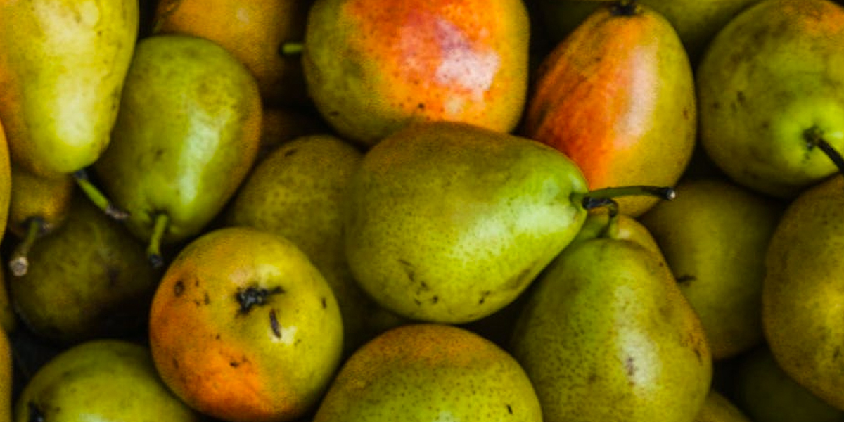 whats-in-season-in-autumn-pears